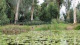 סיור שביל הנעמן - תיירות כפר מסריק